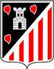 C.D. Elgoibar Cadete